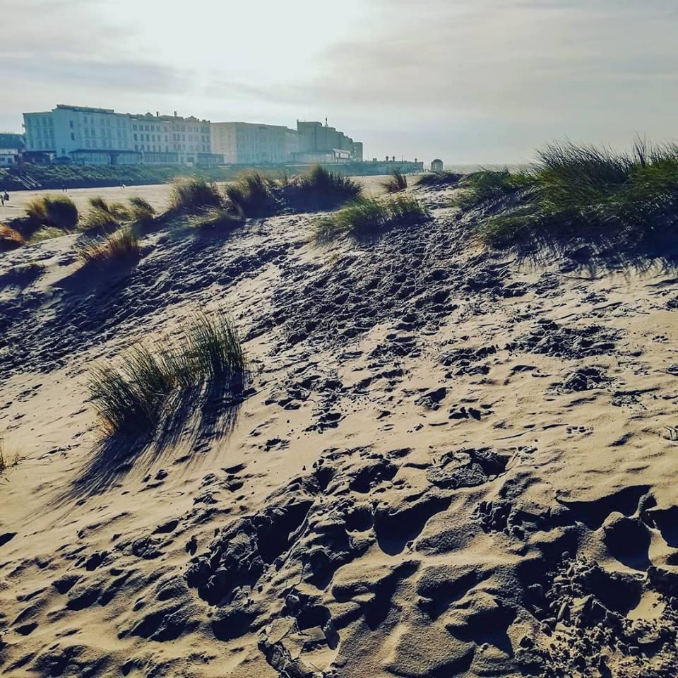 Nordseeinsel Borkum Urlaub Ferienwohnung Bunte Kuh Borkum (17)